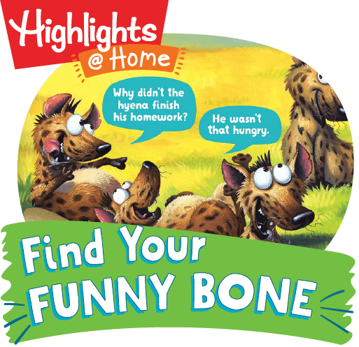 Find Your Funny Bone