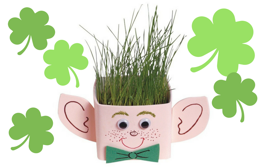 "Leprechaun ""Hair"" Planter"