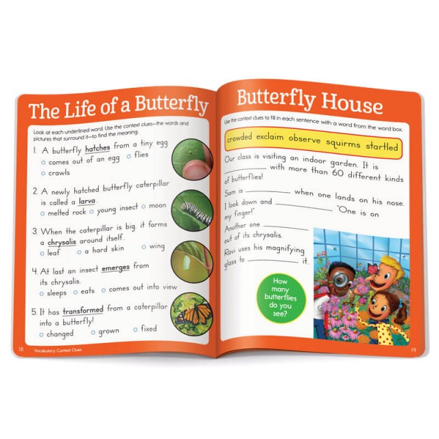 Butterfly lifecycle article and questions
